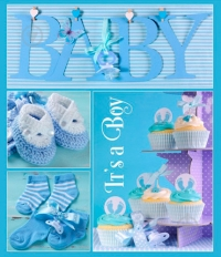 Альбом EVG 20sheet Baby collage w/box (с анкетой)